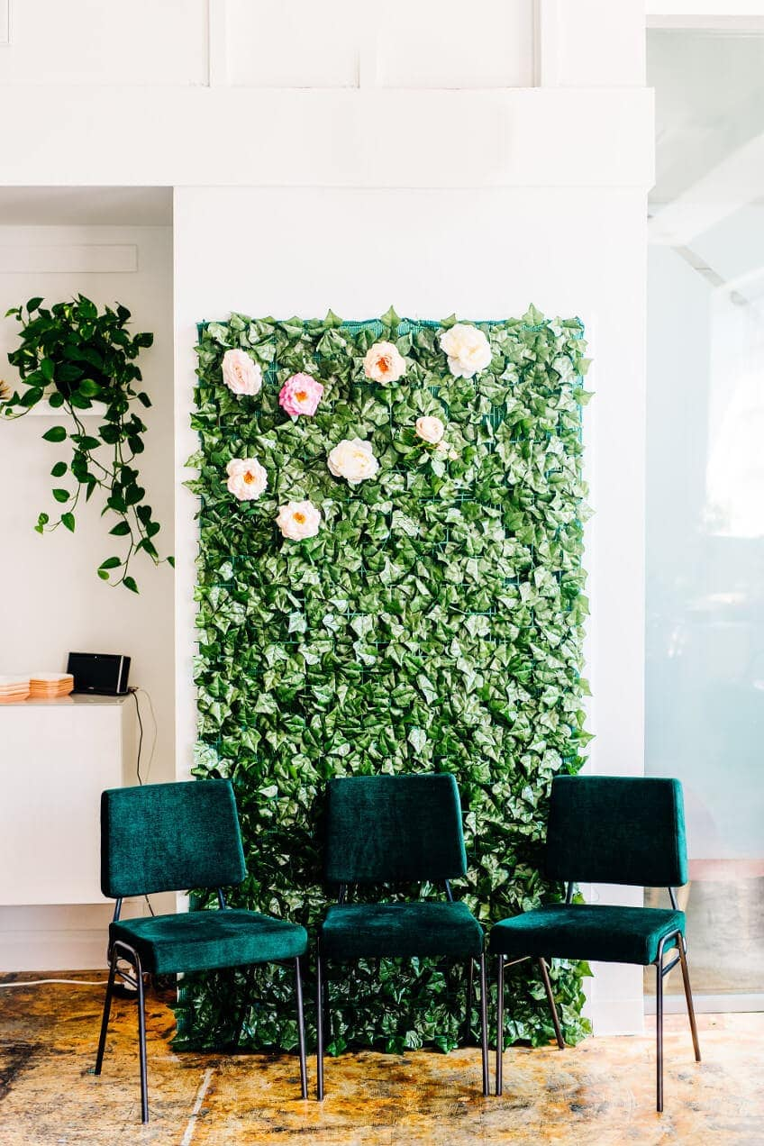 Plant Backdrop